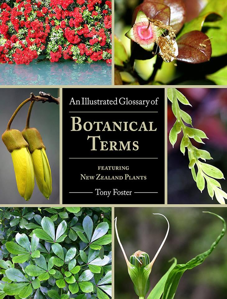 Illustrated Glossary of Botanical Terms Tony Foster - boat tours harbour taxi