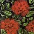 7924_ Pohutukawa_ Adams_ Diana_s - New Zealand gardening
